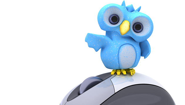 bigstock-D-Render-of-a-Cute-Blue-Bird-28596857
